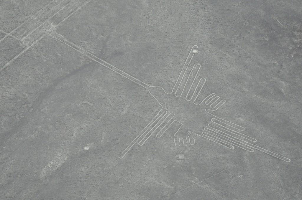 ナスカの地上絵ハチドリ(96m)